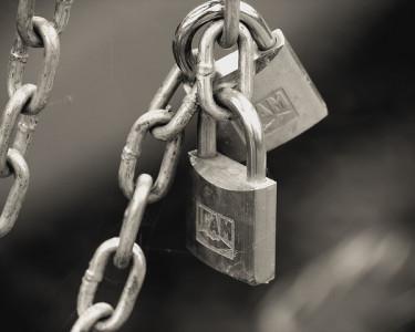 Sellos de calidad y seguridad: tándem para el e-comprador