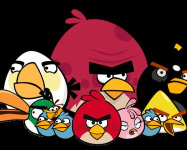angry_birds_flock_by_jeremiekent13-d5lc45k