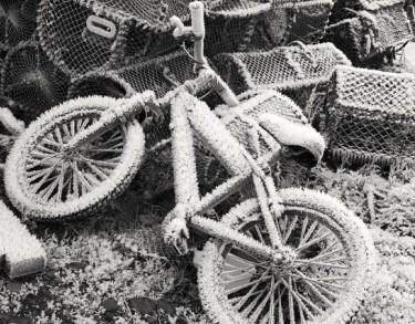 bike-796356_1920