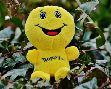 happy-1175546_1920