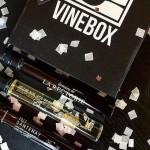 WineVox / Una de las startups de YCombinator